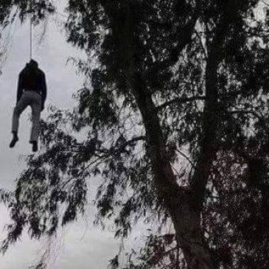 عاجل:العثور على جثة شاب معلق بشجرة بتنكيبت الخنك الرشيدية