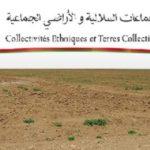 مجلس الحكومة يصادق على مشاريع قوانين أراضي الجماعات السلالية