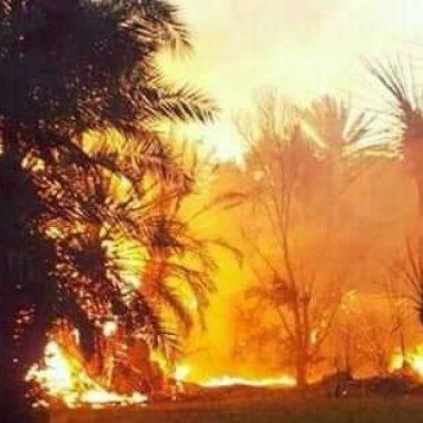 حريق مهول يندلع بغابة أوفوس